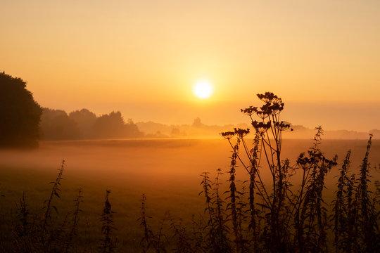 Mystischer Sonnenaufgang - Nebel im September