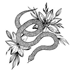 Hand drawn ink snake and lilies flowers, vector illustration. Snake silhouette illustration. Vector tattoo design. Graphic sketch for posters, tattoo, clothes, t-shirt design, pins, patches, stickers.