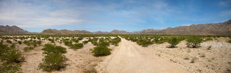 Kaokoland desert road