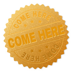 COME HERE gold stamp medallion. Vector gold medal with COME HERE text. Text labels are placed between parallel lines and on circle. Golden area has metallic effect.