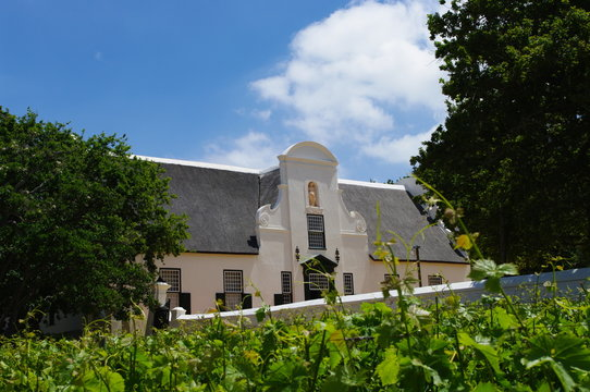 Groot Constantia homestead from the vineyards, Cape Town, South Africa