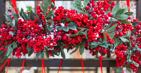 Christmas background with red berries of viburnum, holly, rowan. Christmas decor