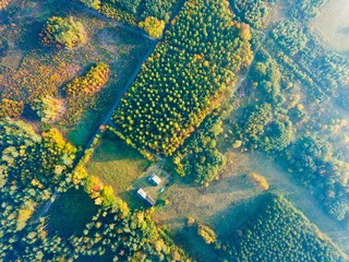 Farm or house in autumnal forest, top down aerial landscape