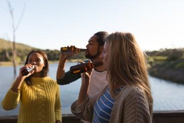 Friends drinking beer in cabin near lake