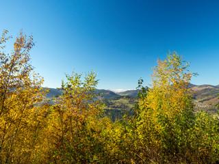 Paysage romantique et typique de Forêt-Noire dans le Bade-Wurtemberg en Allemagne. Fröhnd