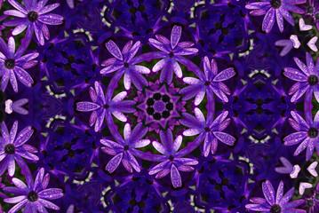 Mandala Calaidoscope _7804f