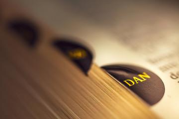 The book of Daniel Fotomurales