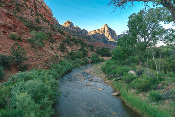 Virgin River flowing through Zion National Park