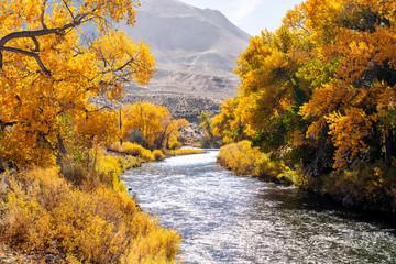 River Runs Through It, Outside Reno, NV