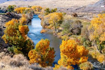 Autumn Outside Reno, Nevada in October