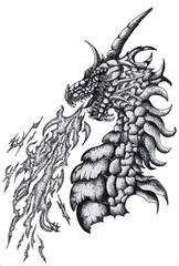 ink illustration dragon isolated on white background