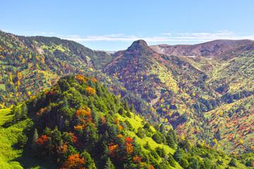 のぞき下から望む秋の志賀高原