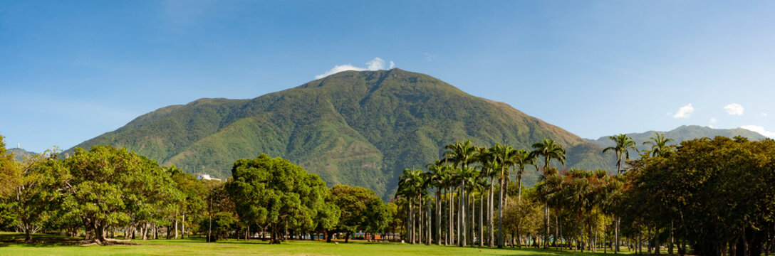 View of the  iconic  Caracas mountain el Avila or Waraira Repano from the East Park or Parque del Este.