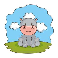 cute hippo in the camp