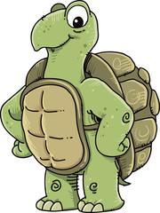 Happy turtle.  Cartoon character design