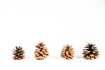 Close up decoration christmas on isolated white background, Ornaments nature decor object, idea background for christmast and new year festival.