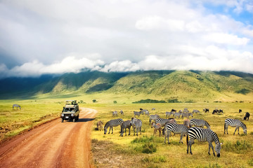 Fotobehang Afrika Wild nature of Africa. Zebras against mountains and clouds. Safari in Ngorongoro Crater National park. Tanzania.