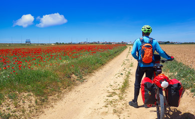 Biker by Camino de Santiago in bicycle Wall mural
