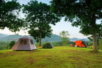 nature landscape camping tent with tree on green grass meadow and mountain in jungle garden or forest with blue sky for family vacation picnic on holiday relax travel in autumn winter on morning