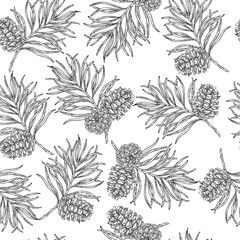 Seamless pattern with hand drawn pine cones and branches. Vector illustration engraved. Design for Christmas greeting cards and packaging.