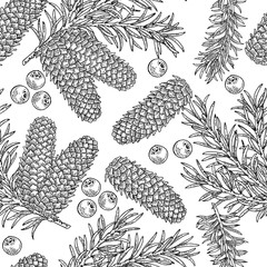 Seamless pattern with hand drawn fir cones, branchesand juniper berries. Vector illustration engraved. Design for Christmas greeting cards and packaging.