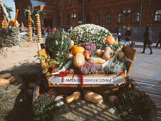 Moscow, Russia - october 1, 2018: Autumn decorations on Manezhnaya square near the Moscow Kremlin during festival Golden Autumn. Cart with pumpkins and hay, harvest holiday Moscow seasons