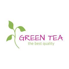 Logo green tea brand label icon vector illustration