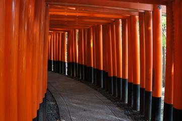 The Inari Shrine in Kyoto, Japan