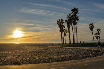 Sunset and Palm trees at Venice Beach, Los Angeles, California.