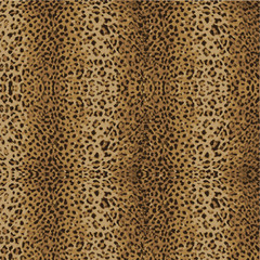 animal skin leopard pattern vector
