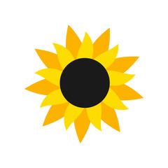 Sunflower icon, flat style.