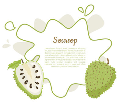 Soursop Whole and Cut Fruit in Abstract Frame Text