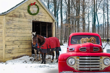 red retro pickup truck and horses by rural barn in winter with Christmas wreath