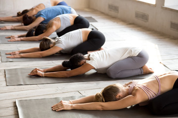 Group of young sporty people practicing yoga, doing Child exercise, Balasana pose, working out, indoor full length, mixed race female students training at club or studio. Well being, wellness concept