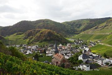 Blick auf ein Dorf im Tal umgeben von Weinbergen und Wald