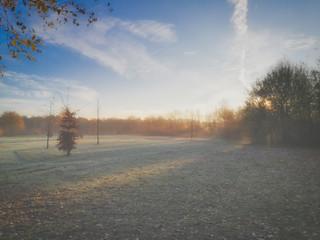 Herbstlicher Morgennebel im Park