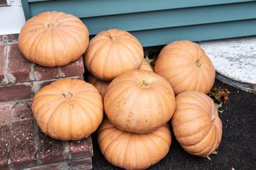 Eight cheese pumpkins