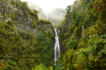 Risco waterfall - madeira island