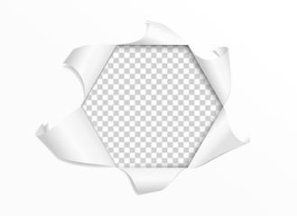 Torn paper realistic. Hexagonal frame. Vector