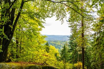 Sächsische Schweiz, Wanderweg zum Königsplatz