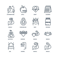 Set Of 16 outline icons such as Muscle, Shower, Abs, Stationary