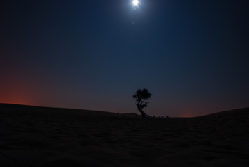 The lonely desert of Dubai