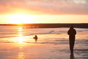 Girl and dog on beach at sunrise