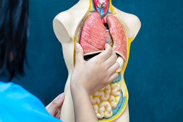 Medical treatment of people,Captures lung model in order to learn.