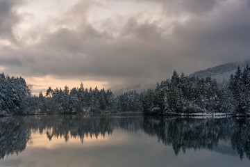 Poster Morning with fog Winter im Naturpark Dobratsch