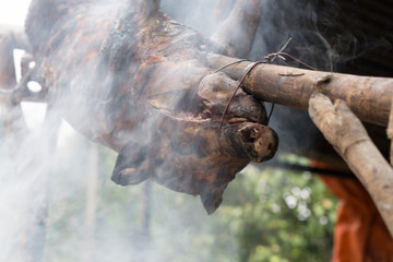a small pig being barbecued