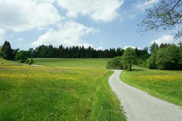 Wanderweg in Deutschland