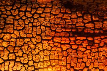 Keuken foto achterwand Brandhout textuur Burnt wood texture, abstract background