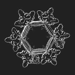 White snowflake isolated on black background. Vector illustration based on macro photo of real snow crystal: elegant star plate with hexagonal symmetry, short, broad arms and glossy relief surface.