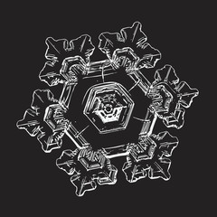 White snowflake isolated on black background. Vector illustration based on macro photo of real snow crystal: elegant star plate with hexagonal symmetry, six short broad arms and complex inner pattern.